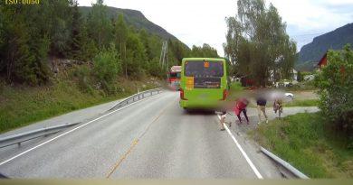 wybieganie zza autobusu